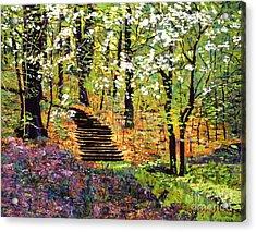 Spring Fantasy Forest Acrylic Print