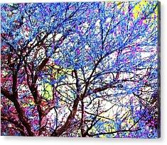 Acrylic Print featuring the photograph Spring Fantasy by Susan Carella