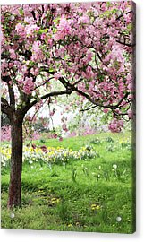 Acrylic Print featuring the photograph Spring Fever by Jessica Jenney