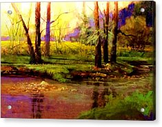 Spring Fields Along Sunlite Creek Acrylic Print by Joseph Barani