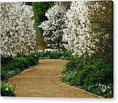 Spring Flowering Trees Wall Art Acrylic Print