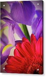 Spring Flowers 001 Acrylic Print by Bobby Villapando