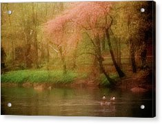 Spring Flowers And Ducks Acrylic Print