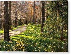 Spring Garden Path Acrylic Print