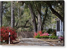 Spring Gate Acrylic Print by Linda Brown