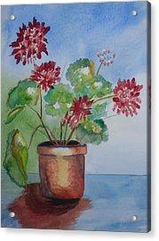 Spring Geranium 1  Acrylic Print