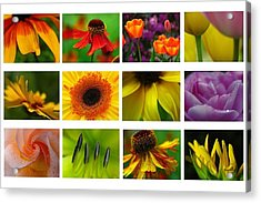 Spring Greetings Acrylic Print by Juergen Roth