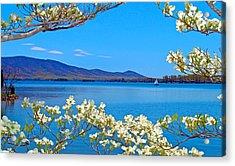 Spring Has Sprung 2 Smith Mountain Lake Acrylic Print by The American Shutterbug Society