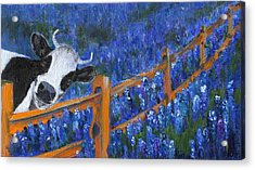 Acrylic Print featuring the painting Spring Has Sprung by Jamie Frier