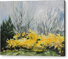 Spring Has Sprung Acrylic Print