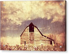 Acrylic Print featuring the photograph Spring In Kansas  by Julie Hamilton