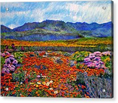Spring In Namaqualand Acrylic Print by Michael Durst