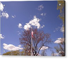 Spring In New England Acrylic Print by Kate Gallagher