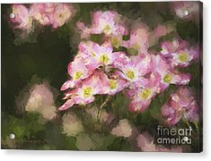 Spring In Pink Acrylic Print