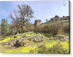 Acrylic Print featuring the photograph Spring In Pinnacles National Park by Art Block Collections