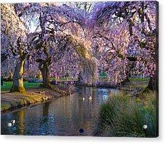 Spring In Portland Acrylic Print