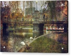 Spring In The Boston Public Garden Acrylic Print by Joann Vitali