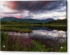 Acrylic Print featuring the photograph Spring In The North Woods by Patrick Downey