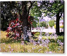 Spring In The Yard Acrylic Print