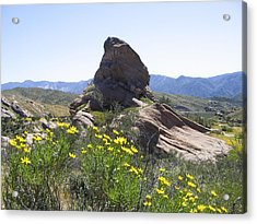 Spring In Vasquez Park Acrylic Print by Ivete Basso Photography