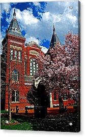 Spring In Washington Dc Acrylic Print