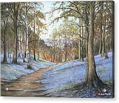 Spring In Wentwood Acrylic Print by Andrew Read