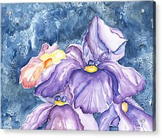 Spring Iris Acrylic Print by Dina Soker