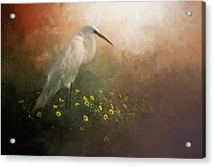 Spring Is Here Acrylic Print by Marvin Spates