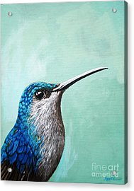 Spring Is Humming - Hummingbird Painting Acrylic Print by Linda Apple