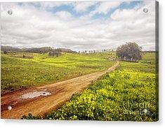 Spring Landscape Acrylic Print by Carlos Caetano