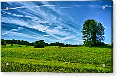 Spring Landscape In Nh Acrylic Print by Edward Myers