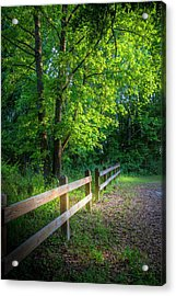Spring Leaves Acrylic Print by Marvin Spates