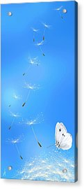 Acrylic Print featuring the painting Spring Lightness by Veronica Minozzi