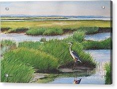 Spring Marsh Acrylic Print by Karol Wyckoff