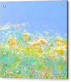 Spring Meadow Abstract Acrylic Print by Menega Sabidussi