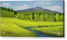 Acrylic Print featuring the painting Spring Meadow Brook by Frank Wilson