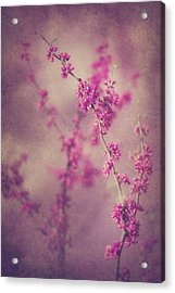 Spring Melody Acrylic Print
