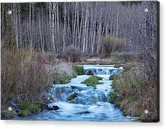 Spring Melt Off Flowing Down From Bonanza Acrylic Print by James BO Insogna