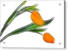 Spring Messenger Acrylic Print