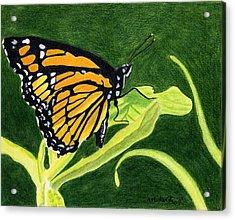 Spring Monarch Acrylic Print