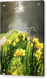 Spring Morning Acrylic Print