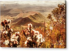 Spring Mountain Blossoms Acrylic Print by Jorgo Photography - Wall Art Gallery