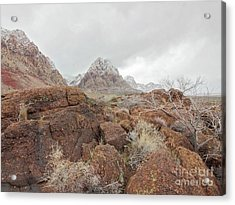 Spring Mountain Ranch Acrylic Print