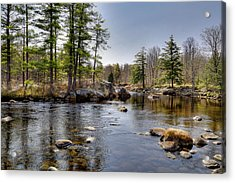 Acrylic Print featuring the photograph Spring Near Moose River Road by David Patterson