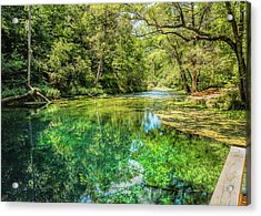 Spring Of Color Acrylic Print