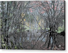 Spring On The Backwater Acrylic Print