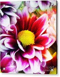 Spring Acrylic Print by Ramneek Narang