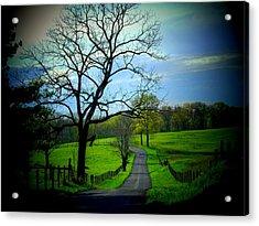 Spring Road Acrylic Print by Michael L Kimble