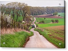 Spring Road. South Moravia Acrylic Print by Jenny Rainbow
