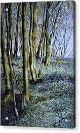 Acrylic Print featuring the painting Spring by Rosemary Colyer